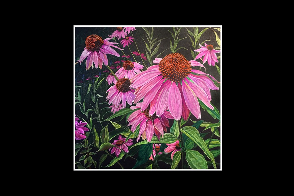 Pink Coneflowers by Kim Ponce
