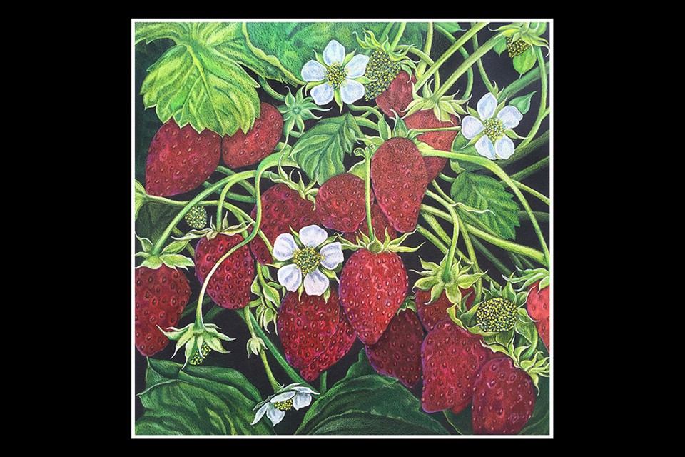 Strawberry Fields Forever by Kim Ponce